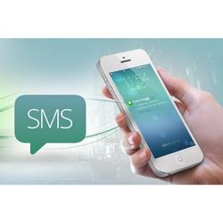 Business Services - Campagna Promozionale realizzata tramite SMS
